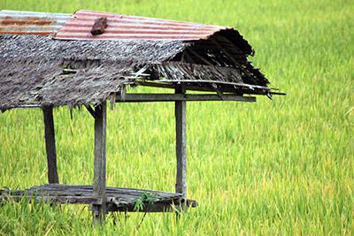 Ubud - Res till Bali
