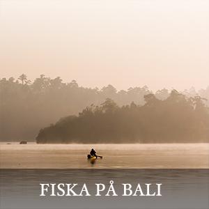 Fiska på Bali - Resa till Bali